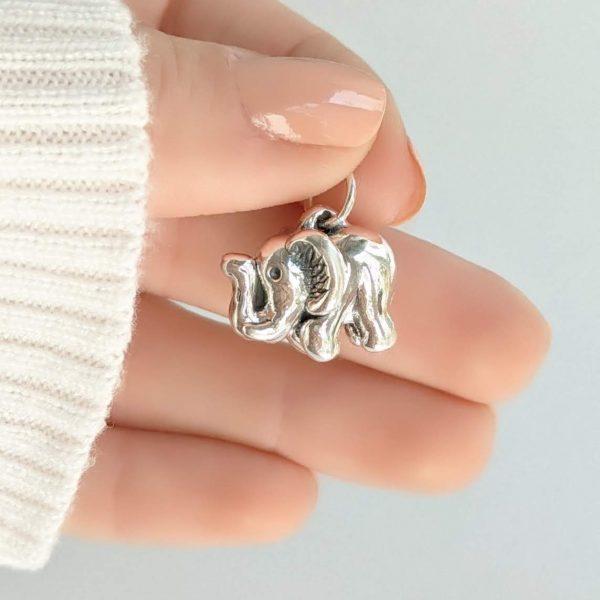 Dije elefante plata inflada